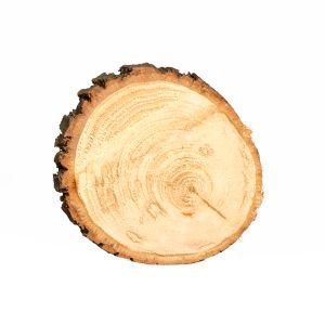 Untersetzer Baumscheibe D18 cm