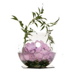 Arrangement Bowle