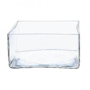 Glasschale B25 x T25 cm