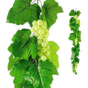 Ranke Weißwein L180 cm