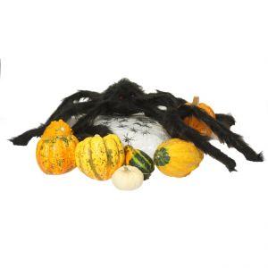 Accessoire-Set Halloween Party