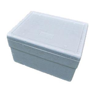 Thermobox B55 x T42 cm
